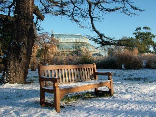 Botanic Seat Dublin