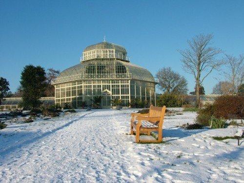 Botanic Garden's Dublin