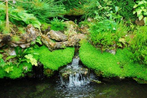 Water flow 2. Kildare town